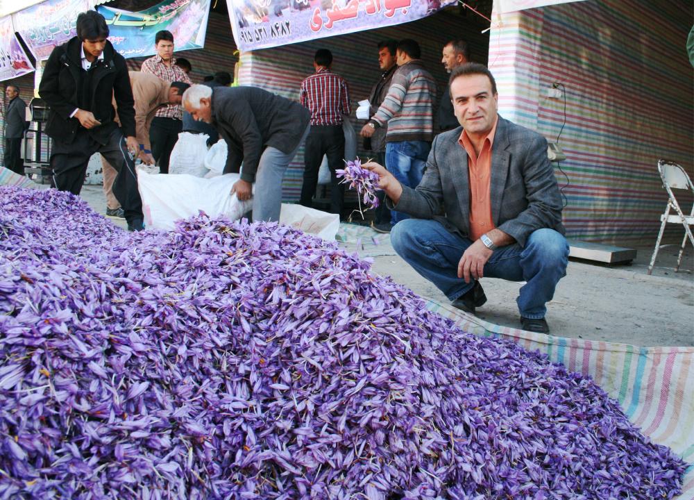 سهم صادرات در تجارت زعفران